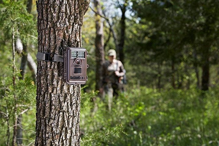 Best-Trail-Camera