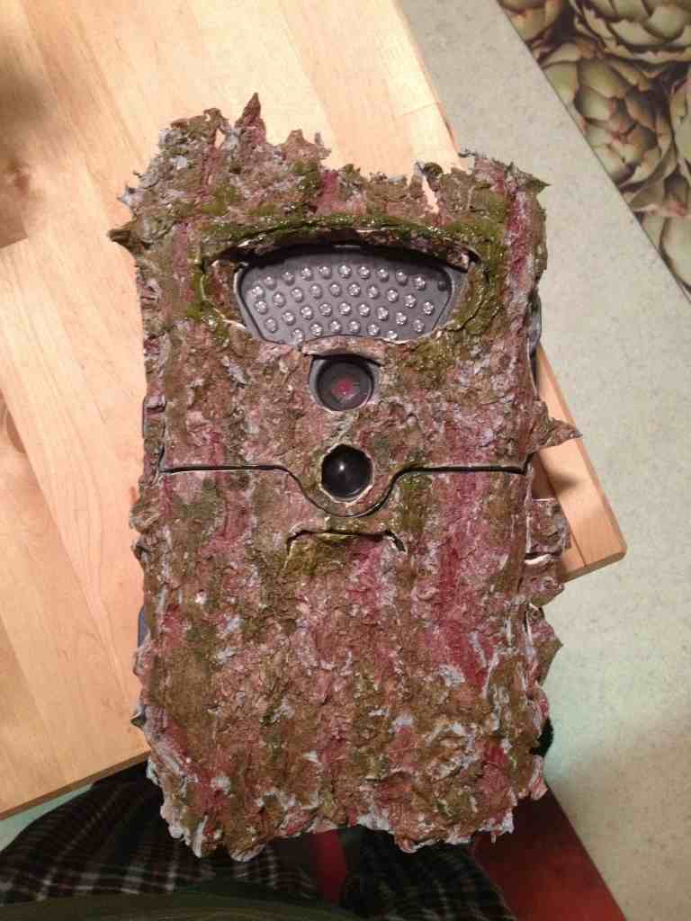 how to secure trail cam