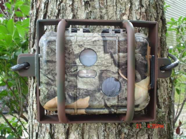Tips On Mounting Trail Cameras And Keeping Them Secure