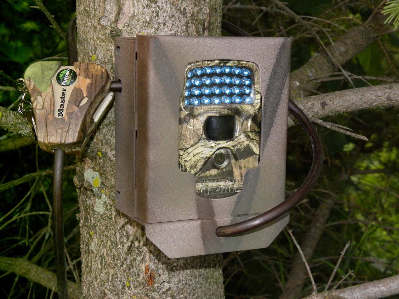 covert trail cameras