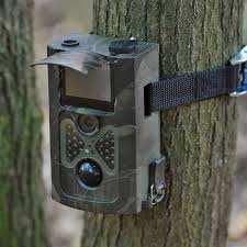 Digital Trail Camera
