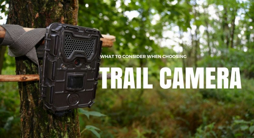 Cheap Trail Cameras
