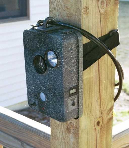 cellular trail cams