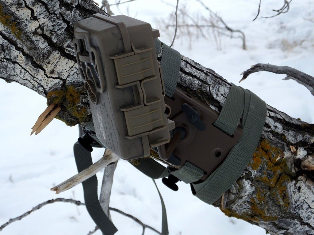 how to keep trail camera from being stolen