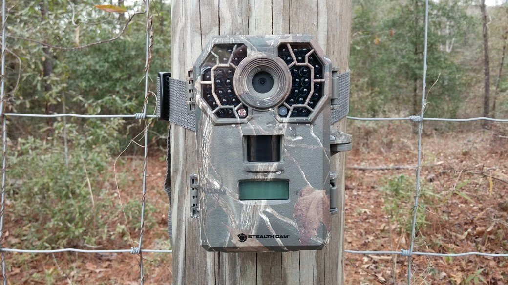 Trail Camera Box